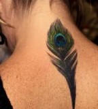 Feather Tattoo Galleryfeather Tattoo Designsfeather Tattoos And