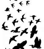 Fabulous Silhouette Of Flying Bird Tattoo Design