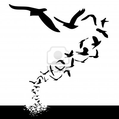 Lot Of Birds Flying Silhouette Tattoo Style Illustration