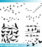 Glamorous Birds Silhouette Tattoo Vector Graphic