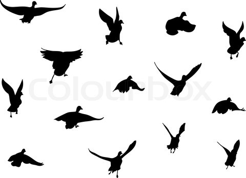 Black Attractive Silhouette Of Flying Birds Tattoo Inspiration Photo