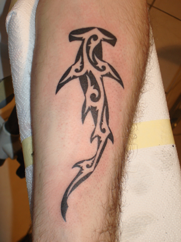 Tribal Hammerhead Shark Tattoo Design On Arm