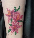 Design Of Pink Flower Tattoos Lily Ideas