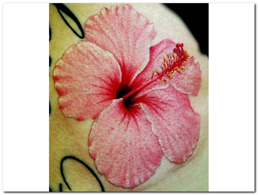 3d Tattoos Designs Hibiscus Flower Tattoo Tattoomagz Tattoo
