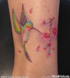 Colorful Hummingbird and Sakura Tattoo Design