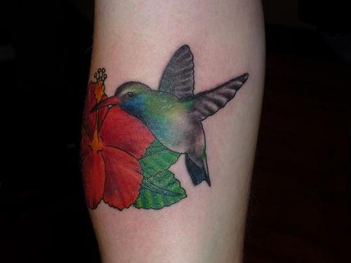Nice Hummingbird Tattoo Design on Arm