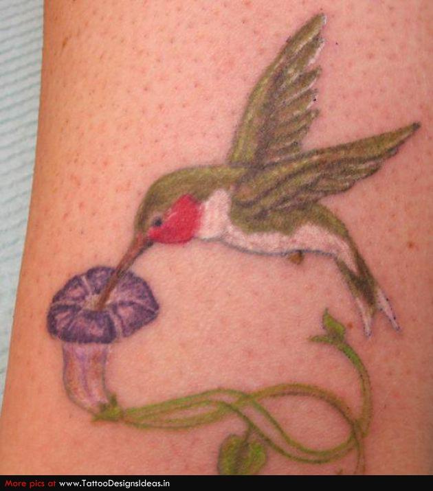 Tattoo Design Of Hummingbird Tattoo