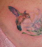 The Versatile Hummingbird Tattoo Design