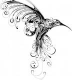 Big Black Hummingbird Tattoo Sketch