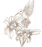 Cool Tattoo Girl Hummingbird Sketch