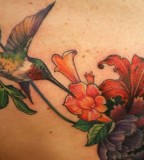Full Color Hummingbird Tattoos Design