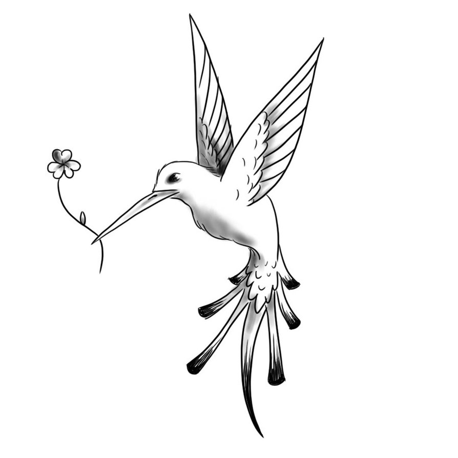 Flying Hummingbird Tattoo Sketch Design