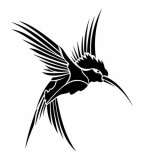 Black Hummingbird Tattoo Sketch Design Ideas
