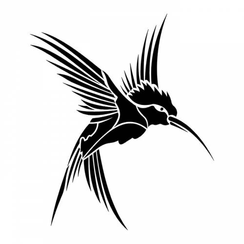 Black Hummingbird Tattoo Sketch Design Ideas