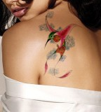 Red Wing Hummingbird Tattoo Design on Shoulder