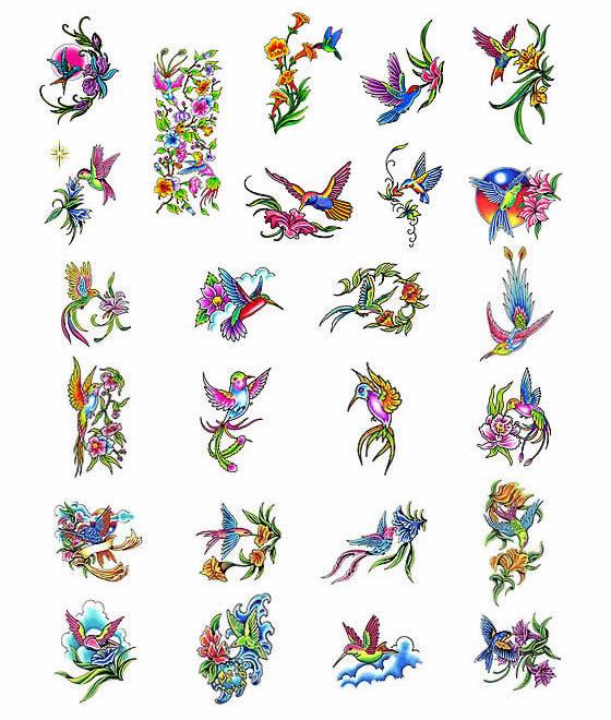 Hummingbird Sketch Tattoos List Design Ideas
