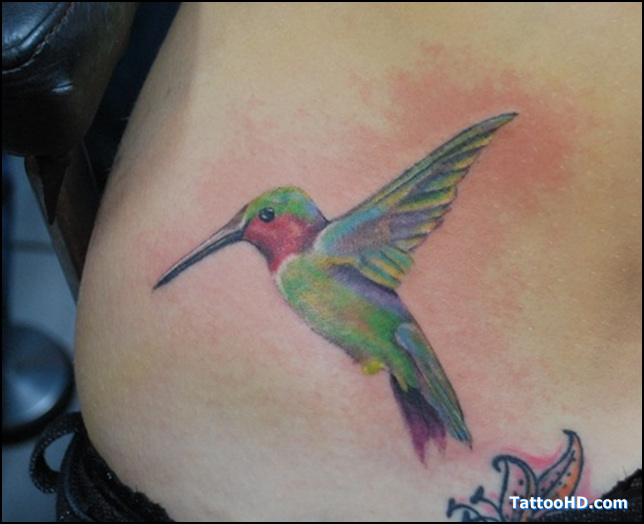 Cute Hummingbird Tattoo Design on Hip