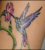 Tatto Design Of Tribal Hummingbird Tattoo Tattoodesignsideas