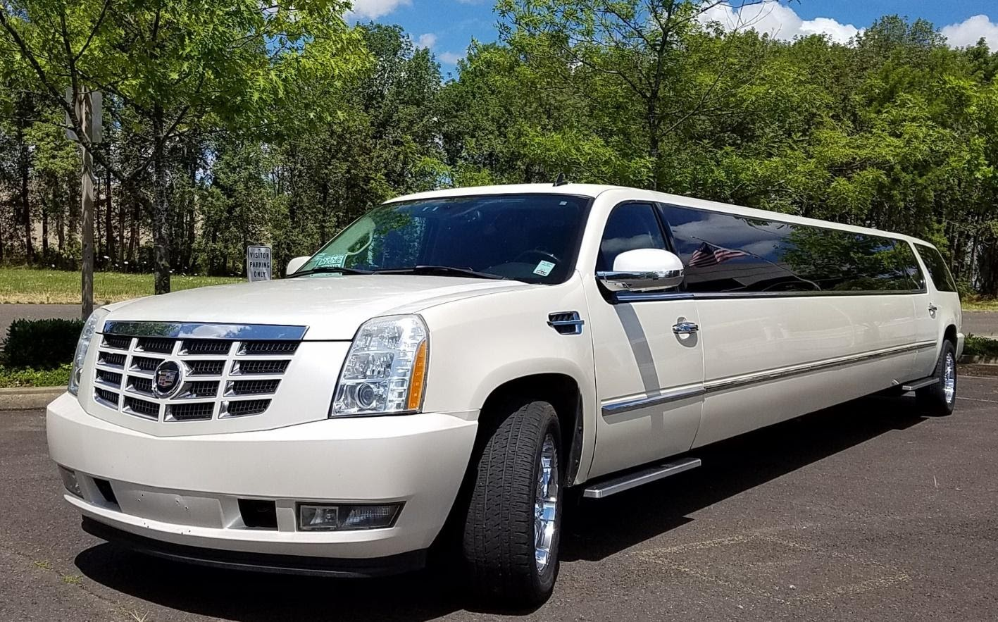 Luxurious and Expensive Limousines