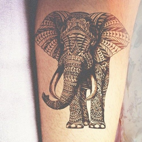 intricate elephant tribal tattoo