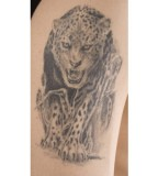 Leopard Tattoo Meaning