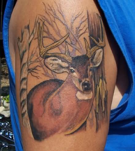 Deer Tattoo Pictures And Meaning