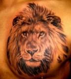 Tatto Design of Tattoo Lion