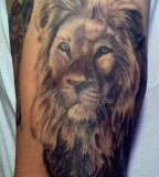 Dashing Lion Face Tattoos