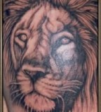 Lion Tattoos Bodyart Pictures