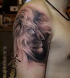 Big Lion Tattoo Design for Men's Shoulder - Lion Tattoos
