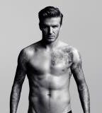 Male Tattoo Models - David Beckham