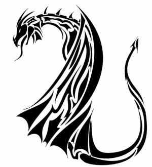Tribal Dragon Tattoos Sketches Design