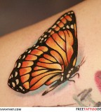 Beautiful Monarch Butterfly Tattoos Ideas for Women - Butterfly Tattoos