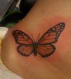 Beautiful Monarch Butterfly Waist / Hip Tattoo for Women