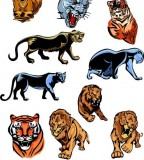 Vector Tiger Lion And Panther Tattoos Meaning