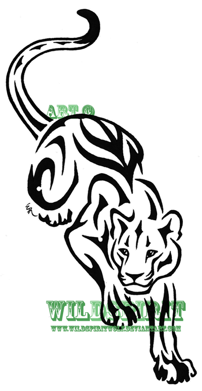 Vector Tiger Lion And Panther Tattoos Meaning Get Rid Of Your