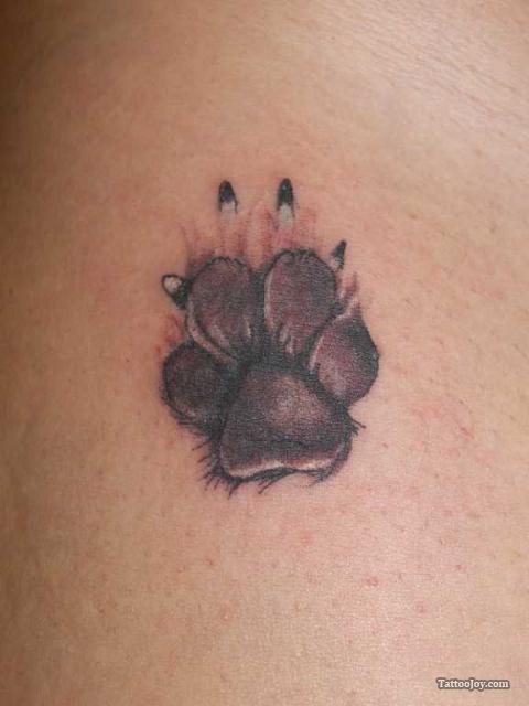 Amazing Dog Paw Print Tattoo Designs - | TattooMagz › Tattoo