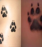 Simple Paw Print Tattoos Ideas Designs And Pictures