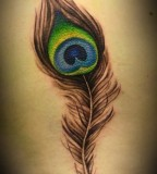 Cute Feather Tattoo Design for Women
