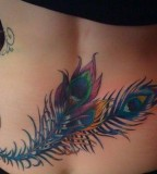 Lower Back Peacock Feather Tattoo Design for Women