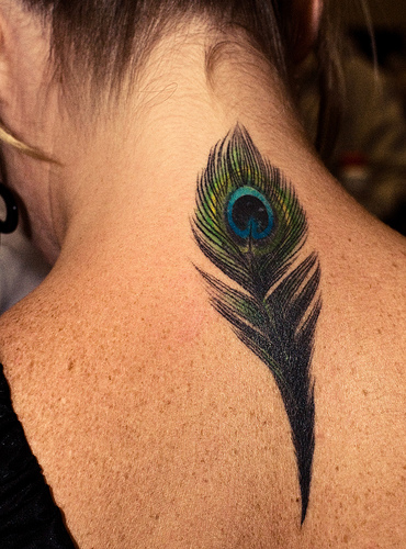 Cute Small Peacock Feather Tattoo on Back