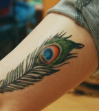 Inner Arm Peacock Feather Tattoo Design