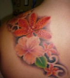 Amazing Plumeria Tattoos Design on Shoulder