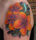 Plumeria Color Tattoo on Shoulder