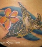 Realistic Turtle With Plumeria Tattoo Design