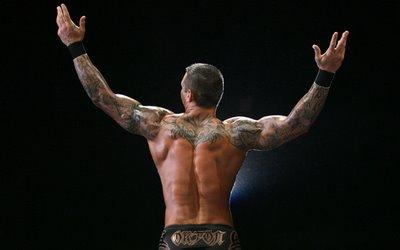 Randy Ortons New Sleeves Tattoo