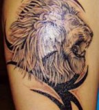 Arm Lion and tribal Tattoo images