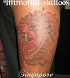 Roaring Lion Tattoo Simbol of Freedom