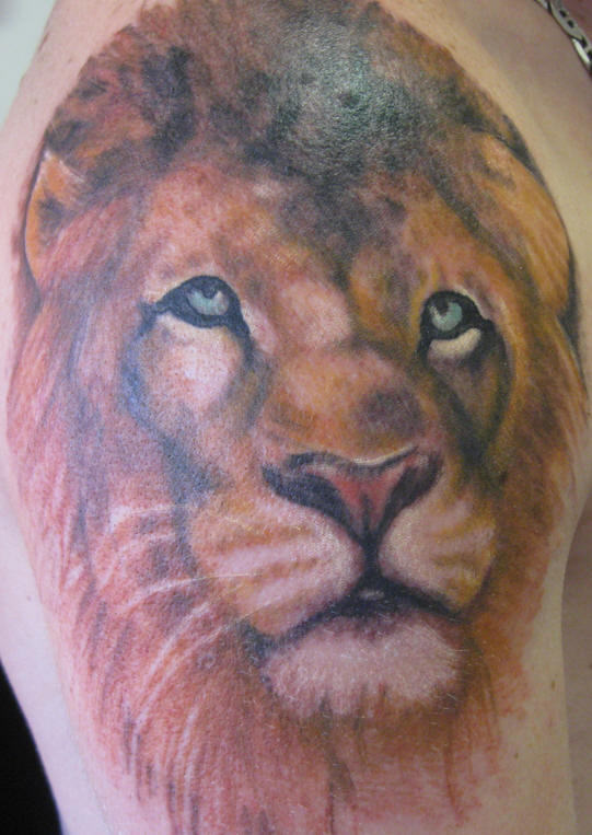 Sad Lion Tattoos Pictures