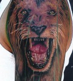 Mike Devries Tattoos Animal Lion Tattoo